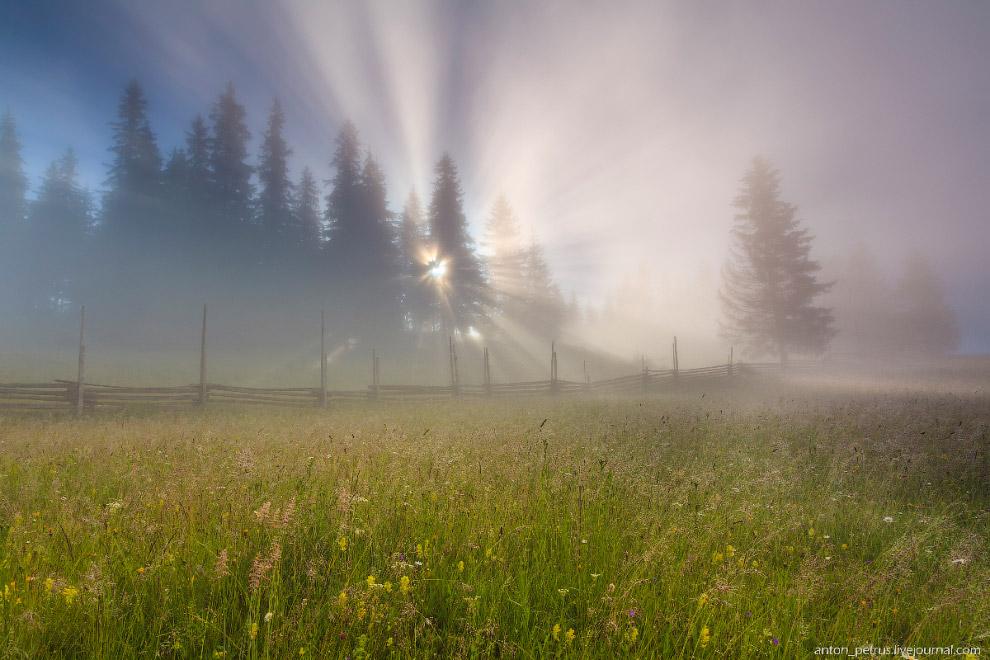 15. Это один из моих любимых сюжетов — лучи, проходящие сквозь туман: