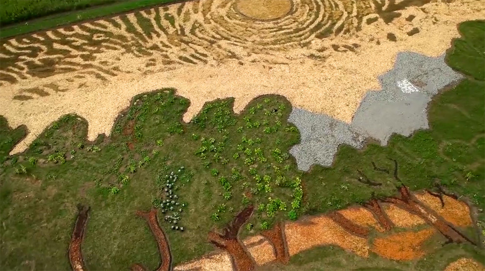 Artist Stan Herd Plants a 1.2-Acre Field Inspired by Van Gogh's 1889 Painting