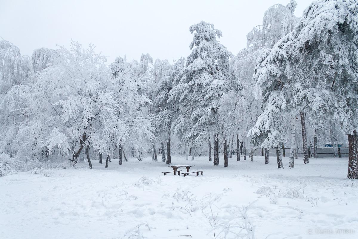 Кумысная поляна зима фото 7