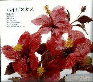 Мастер-класс. Гибискус  в японской технике цветоделия от Vortex  0_fc0a9_dfa1ebcc_M