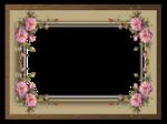 Frame (15).png