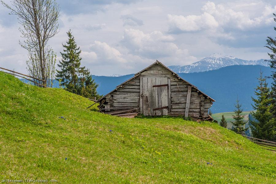 одинокий дом в карпатах