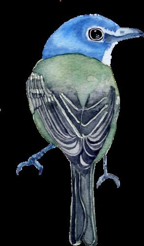 CreatewingsDesigns_FF_Bird7.png