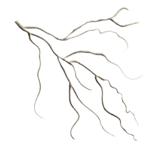 Sweet Christmas_Branch_Scrap and Tubes.png