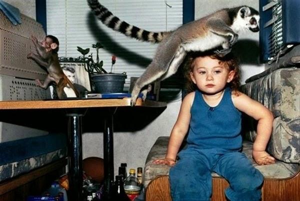 Радостные фотографии прыгающих людей и животных 0 130953 fce7e5b6 orig