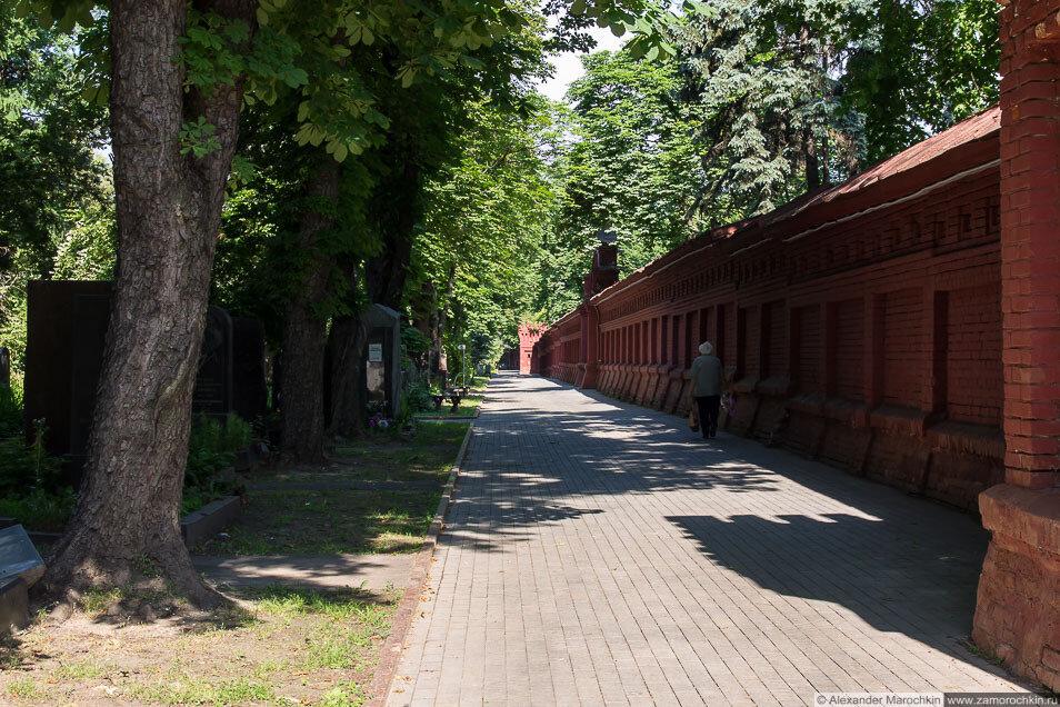 Новодевичье кладбище стена фото