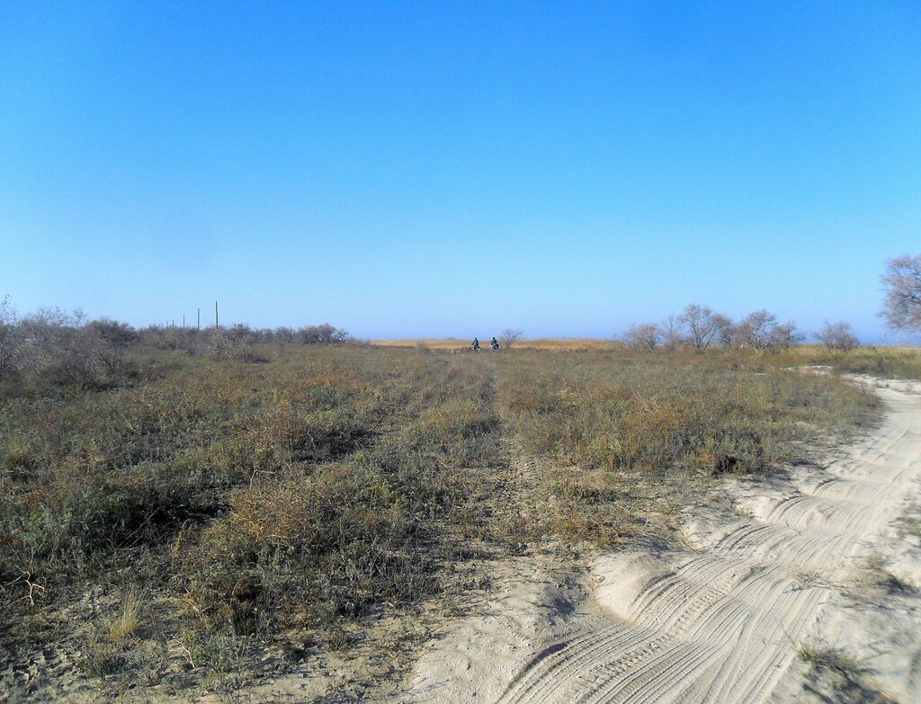 На Азовском побережье, ноябрь ... SAM_4533.JPG
