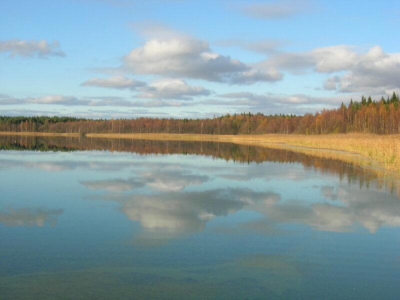 Природа нашего края (ФОТО) | Вологодская область