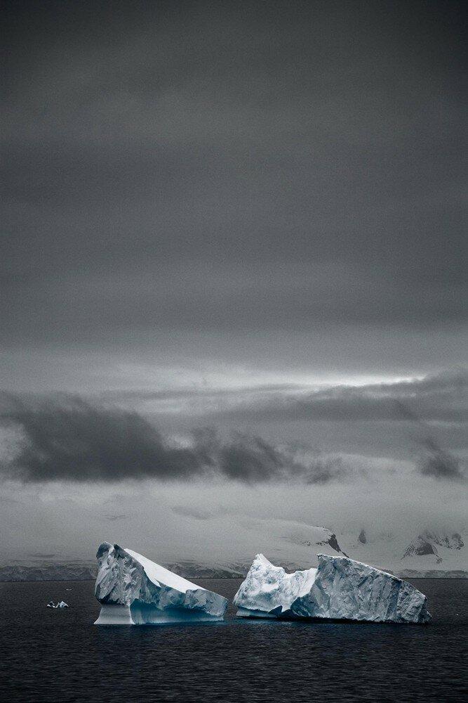 The last iceberg, Camille Seaman.jpg