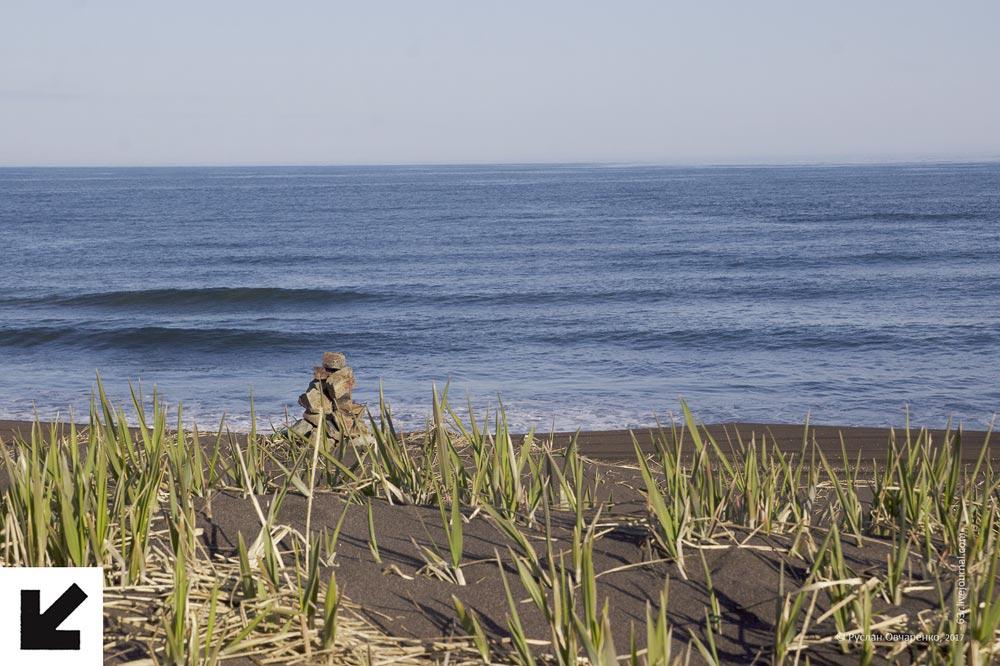 пейзаж, пляж, песок, тихий океан, океан, камчатка, трава, путешествие, рюкзак