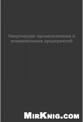 Книга Энергоаудит промышленных и коммунальных предприятий