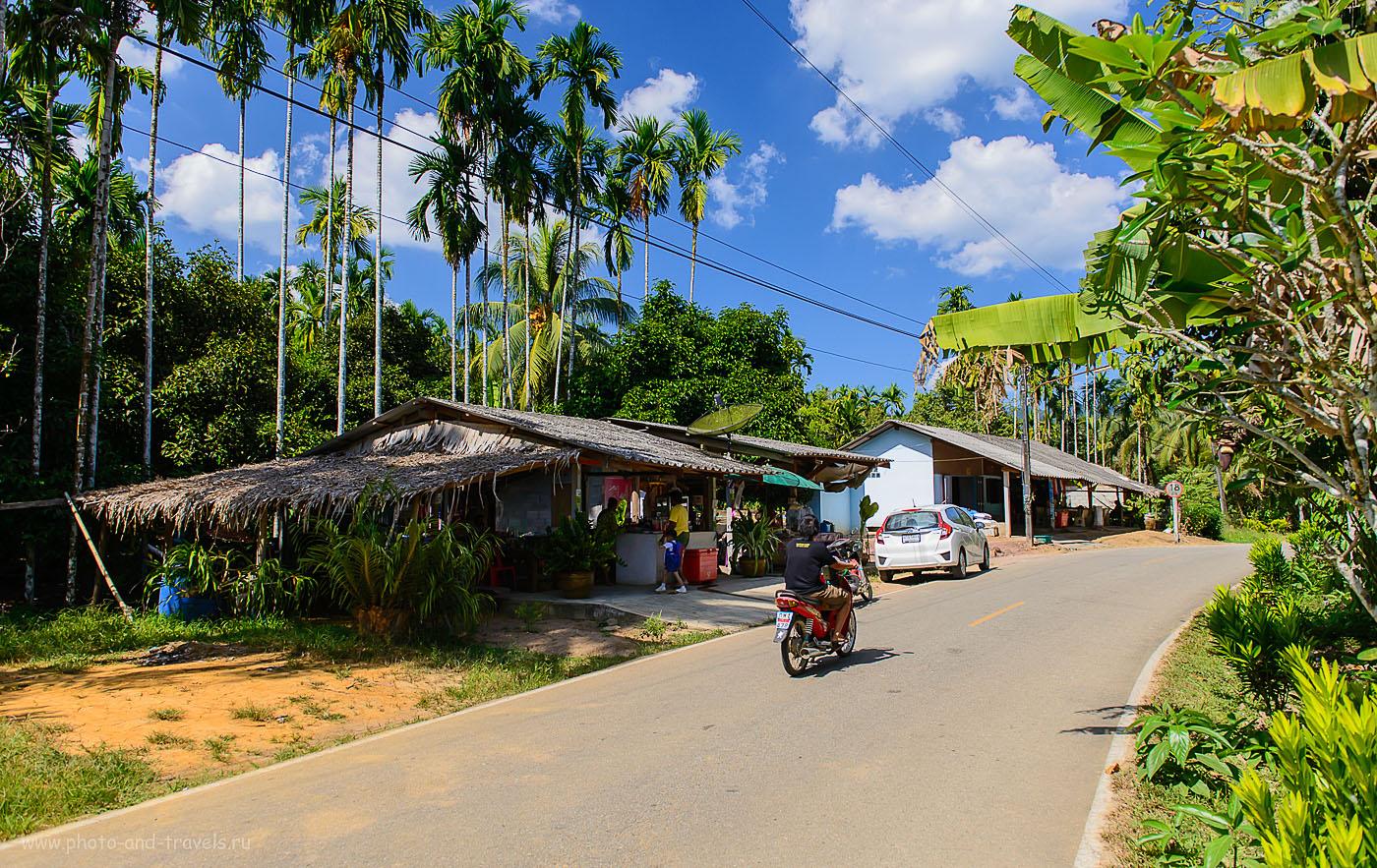 Фотография 3. Отдых в Таиланде. Безымянное кафе на въезде в неназванную тайскую деревню по дороге в Ранонг (800, 24, 4.5, 1/2000)