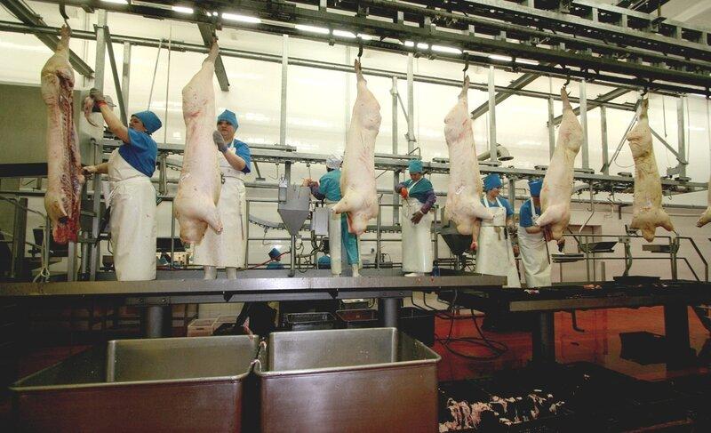 Трубчатые подвесные пути предназначены для транспортировки туш крс и свиней на мясокомбинатах и в холодильных камерах.