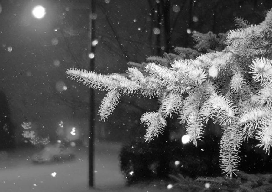 зима-ночь-снег.jpg
