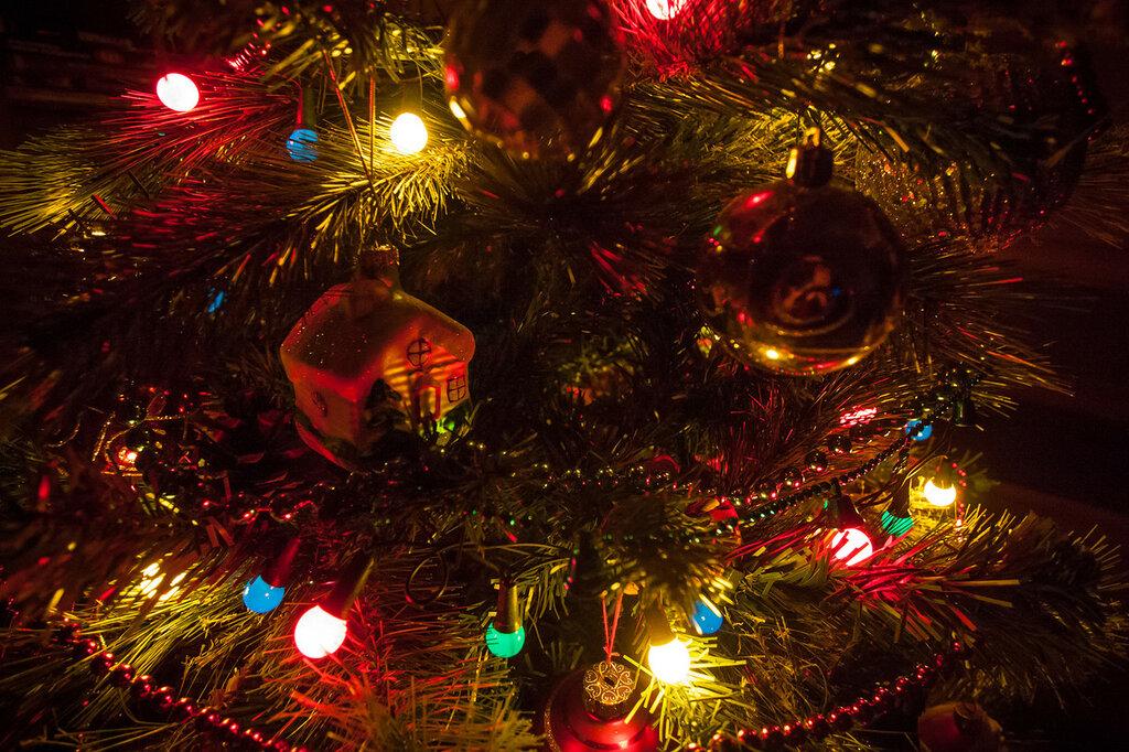 В глубине рождественской елки