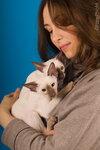 Милые сиамские котята с заводчицей Ириной