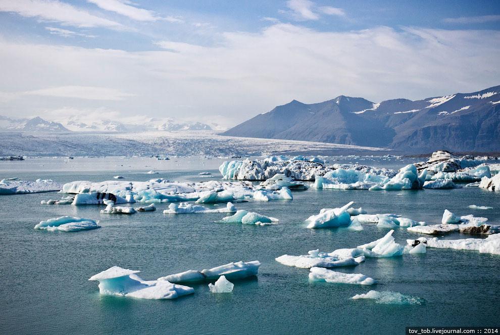 Возле выхода лагуны в океан находится нагромождение льда и айсбергов, которые и привлекают вним
