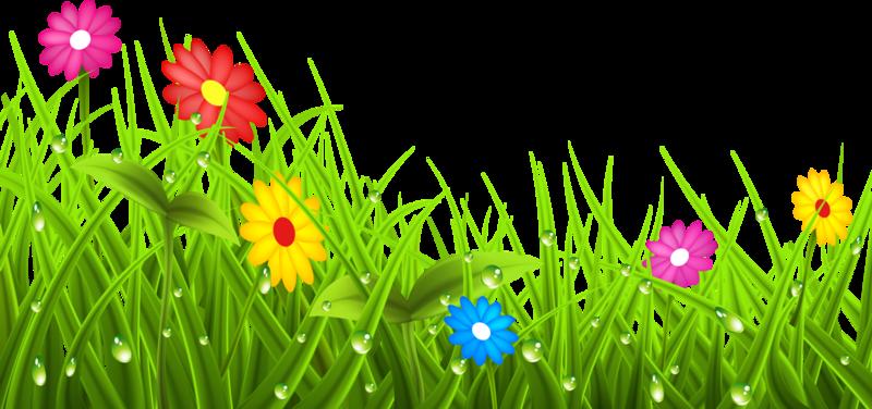 Картинка травка с цветочками