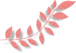 LH_Curious_Leaves_007.png
