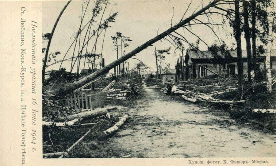 13643 После урагана К. Фишер.jpg