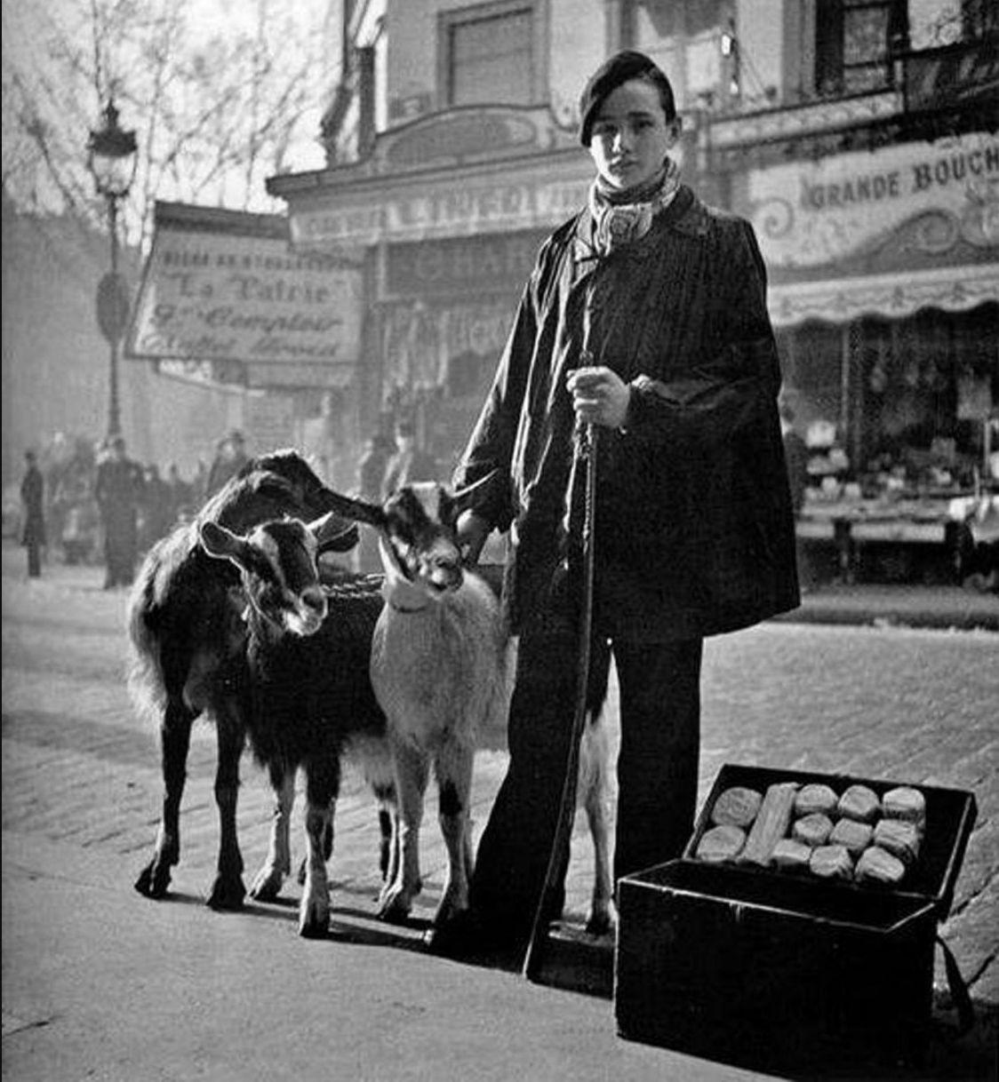 1935. Продажа козьего сыра в сопровождении коз