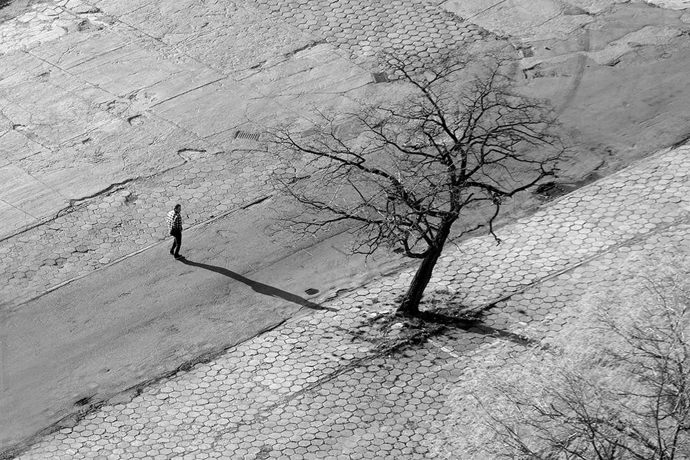 Красота минимализма на снимках Павела Франика