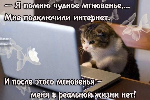 Открытки. С Днем Интернета. Мне подключили интернет! открытки фото рисунки картинки поздравления