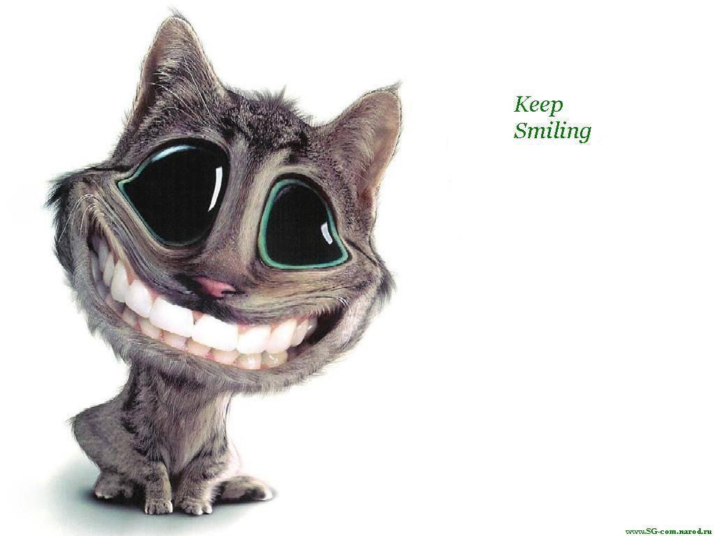 С Днем улыбки! Улыбка кота открытки фото рисунки картинки поздравления