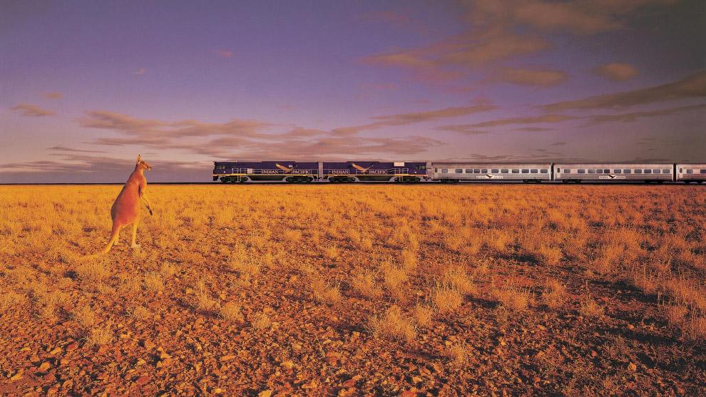 На поезде действует три уровня привилегий: например, пассажиры платинового уровня могут рассчит