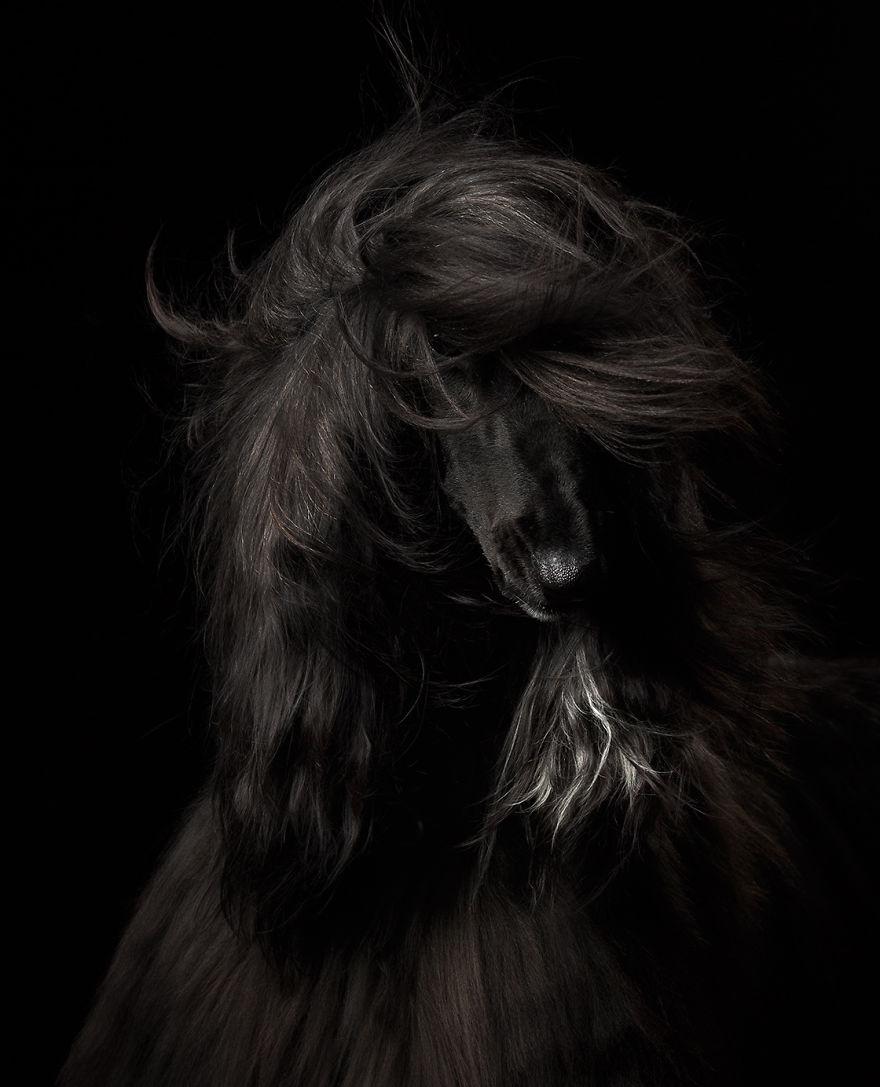 Первое место в категории «Портрет». Автор снимка — россиянка Анастасия Ветковская.