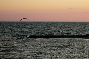 Вечер, чайка и рыбак