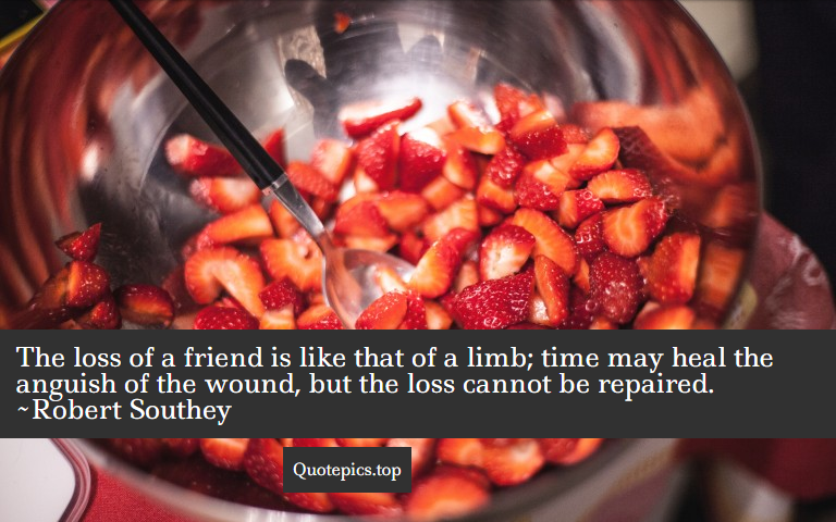 The loss of a friend is like that of a limb; time may heal the anguish of the wound, but the loss cannot be repaired. ~Robert Southey
