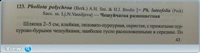 0_184f88_b19938fc_orig.png