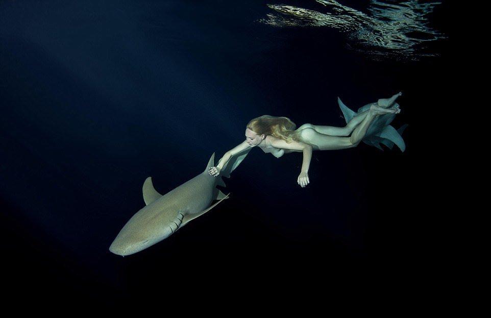 Обнаженная модель плавает с акулами