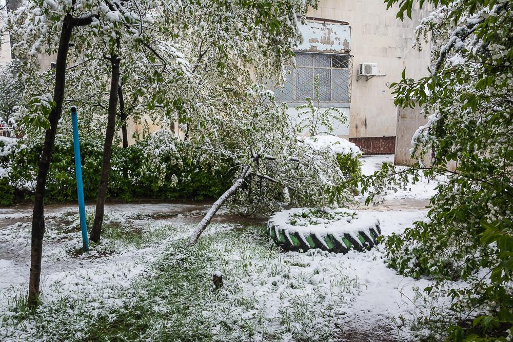 Погода в городе балашиха