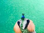 На Голубом озере