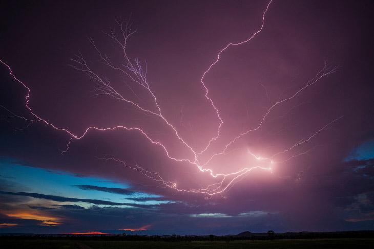 1. В год молния ударяет более 1.3 миллиарда раз, и от них погибают около 100 человек.  Гроза