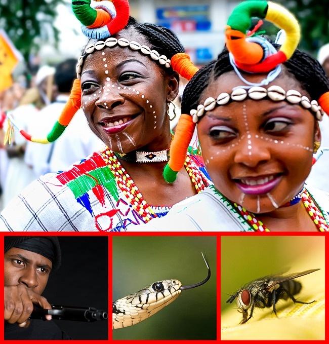© depositphotos  © depositphotos  © pixabay  © depositphotos  Нигерии пришло