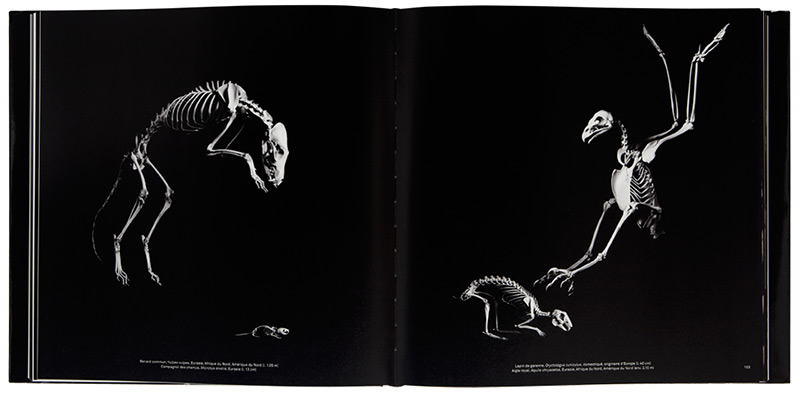 © Xavier Barral Created in collaboration with the National Museum of Natural History in Paris,