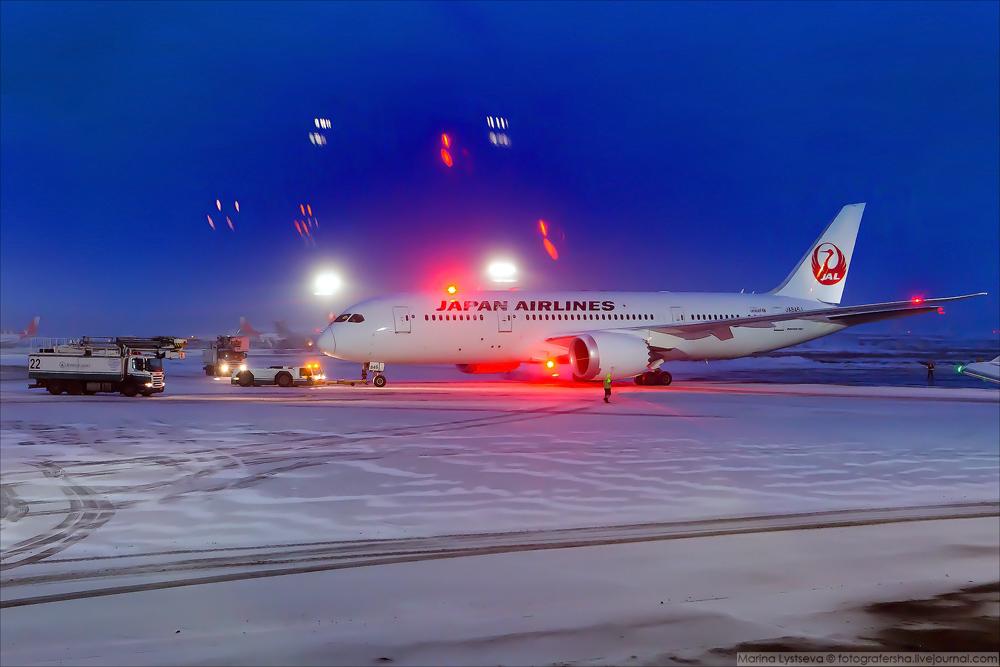 Dreamliner B787 JAL