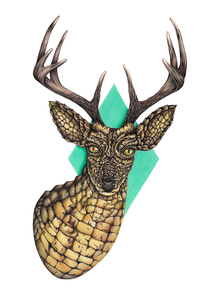 Surreal Hand-Drawn Animal Illustrations by Chloe Mickham