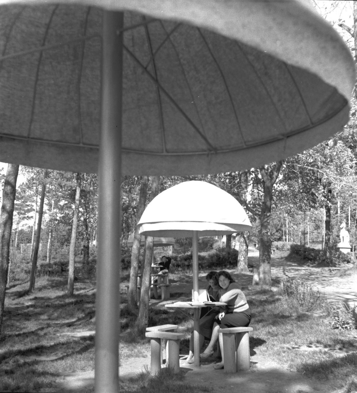 В городском парке под зонтиком