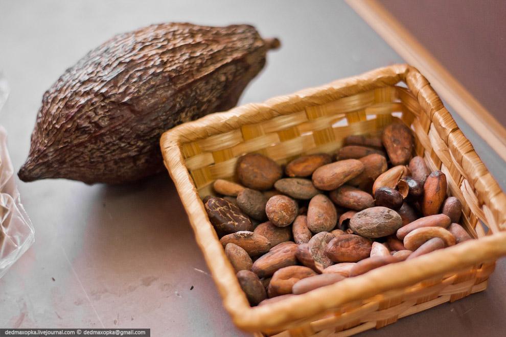 В зависимости от состава, шоколад делят на классический, горький, молочный и белый. Обыкновенны
