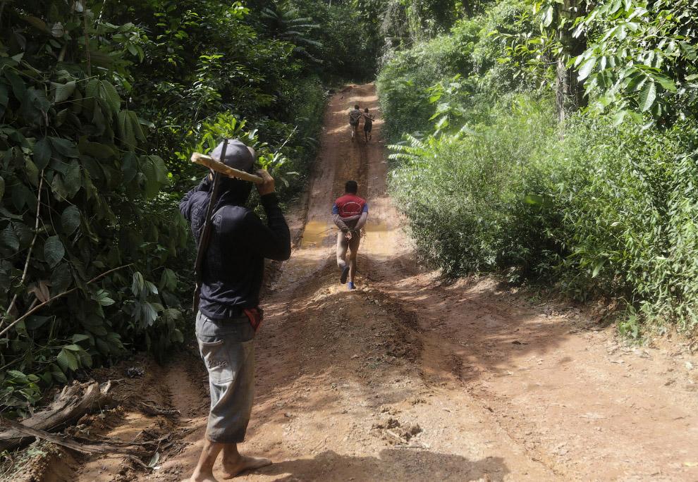 20. Как воины джунглей Амазонки борются с черными лесорубами и защищают свои территории, когда