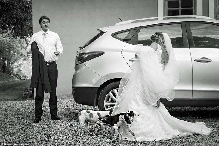 Что-то жених не спешит спасать невесту от собак.