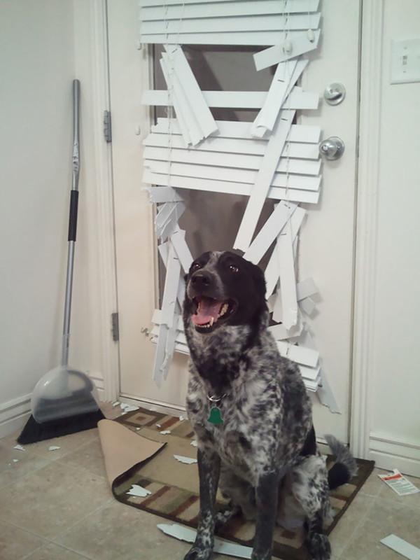 Проверил новое кресло