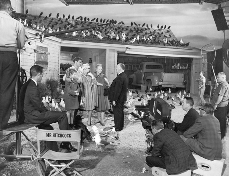 3. На съемочной площадке фильма «Птицы», 1963 год.