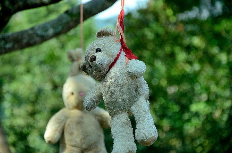 Медведь повесился