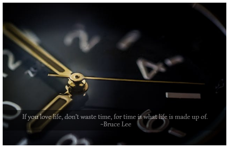 If you love life, don't waste time, for time is what life is made up of. ~Bruce Lee