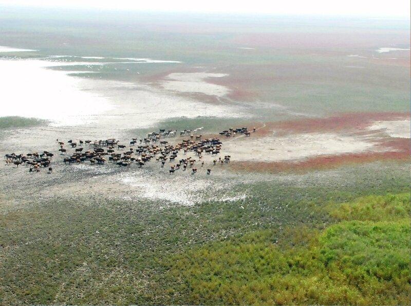 С высоты полёта...Фрагмент фото, Фотографии olga-kirilyuk, фото из интернета (182).jpg